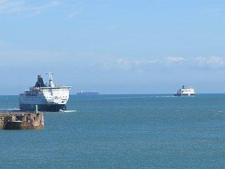 Haven van Dover