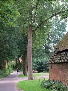 wandelen bij Den Bosch