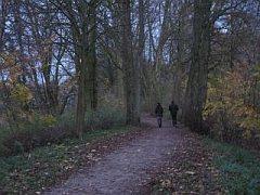 Wandelen bij Zaltbommel