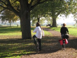 fietsen vesting hertogenbosch