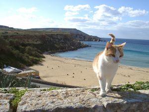 strand op Malta