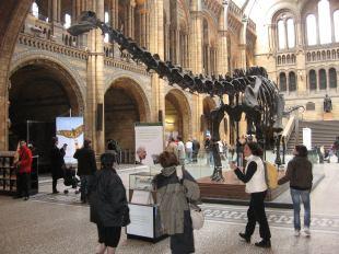 museum Londen