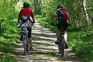 fietsen bossen